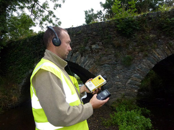Bat Survey Ireland (23)