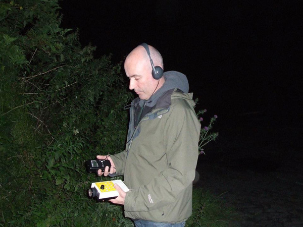 Bat Survey Ireland (37)