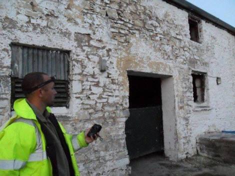 Bat Survey Ireland (6)