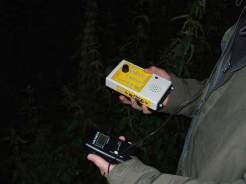 Bat Surveys (3)