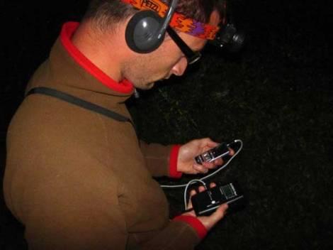 Bat Surveys (6)
