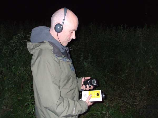 Bat Surveys Ireland (5)