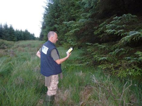 Bat Survey Ireland (21)