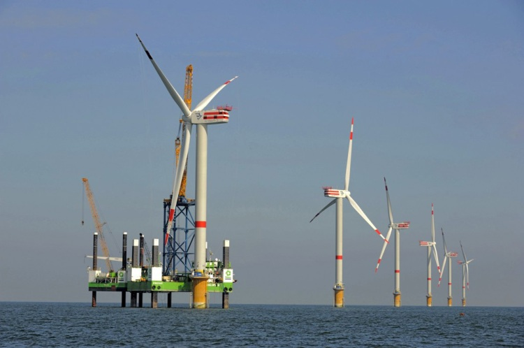 Bats-and-offshore-windfarms-3