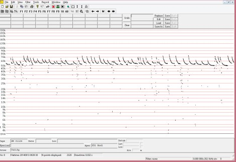 Anabat sonogram recorded of a Soprano pipistrelle recorded at this maternity roost